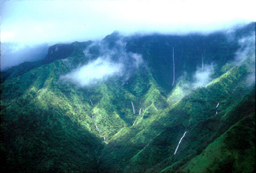 a luscious green Hawaiian valley